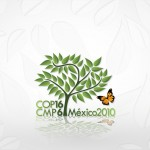 GOJoven delegation participates in Conference of Youth and COP16 in Cancun, Mexico