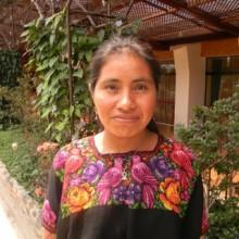 Bonifacia Cocom Tambriz