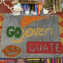 GOJoven Guatemala Contribuye al Informe CIPD Guatemala